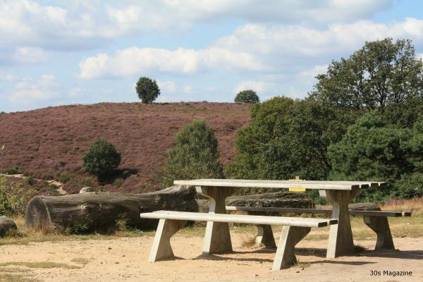 bench in heatherfield