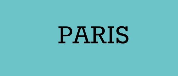 Paris banner