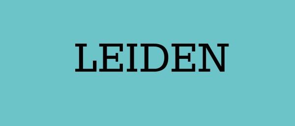 Leiden banner