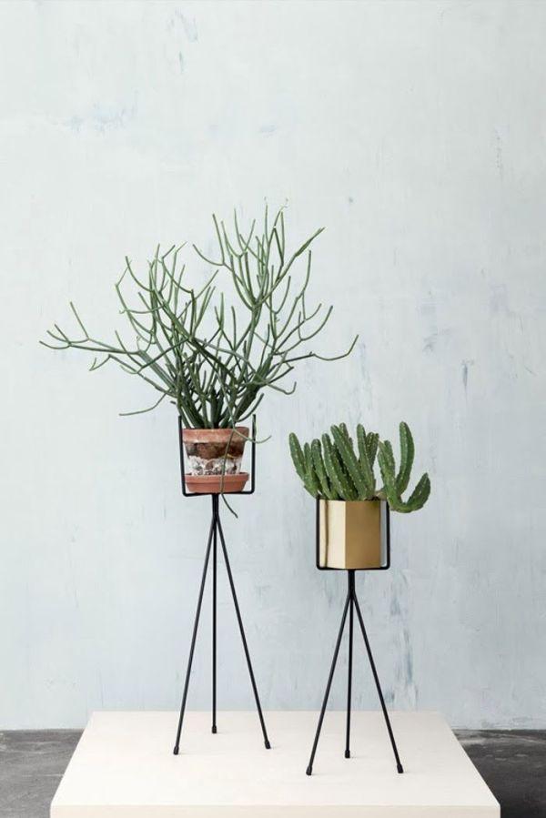 plant pedestal