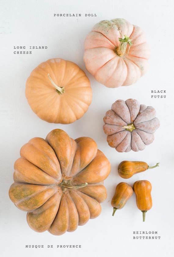 pink-heirloom-pumpkins-fall-decor-1
