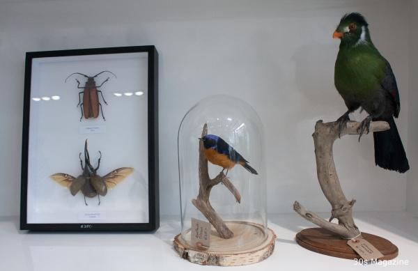 Wonderful Nature store Leiden